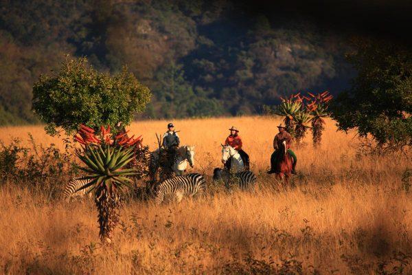 Africa de Sud, Lesotho, Svaziland